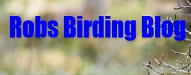 Top 20 Nature Blogs | Robs Birding Blog
