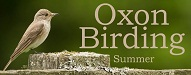 Top 20 Nature Blogs | Oxon Birding Blog