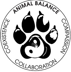 Bimonthly Charity Campaign 2019 animalbalance.org